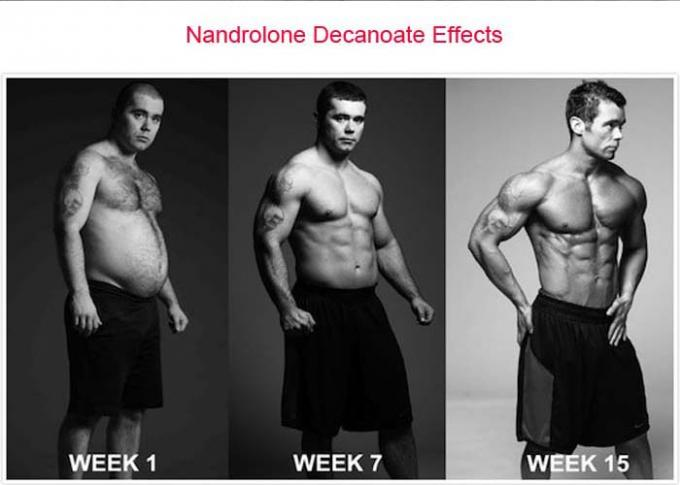 Nandrolone Decanoate DECA Durabolin Steroid CAS 360-70-3 Effective Muscle Gaining Powder