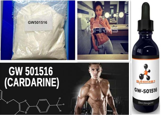 Bodybuilding Sarms GW 501516 , Muscle Building Steroids For Men CAS 317318-70-0