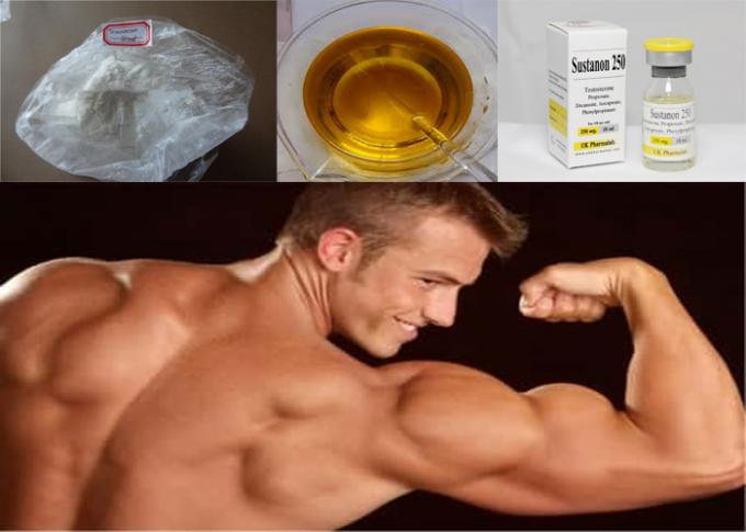 Legal Anabolic Steroids White Raw Powders Testosterone Sustanon250 for Mass Gaining
