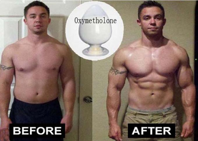 Oral Anabolic Cutting Cycle Steroids Anadrol / Oxymetholone Powder Mass Gaining Supplement