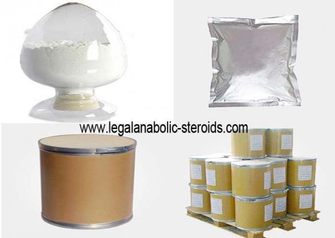 Legal Cortical Hormone Prednisolone Pharmaceutical Powders CAS 50 24 8 Purity 99%