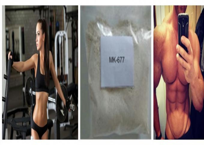 MK 677 Sarms Fat Burning Steroids Raw Powder CAS 159752-10-0 For Safe Effective Muscle Gain