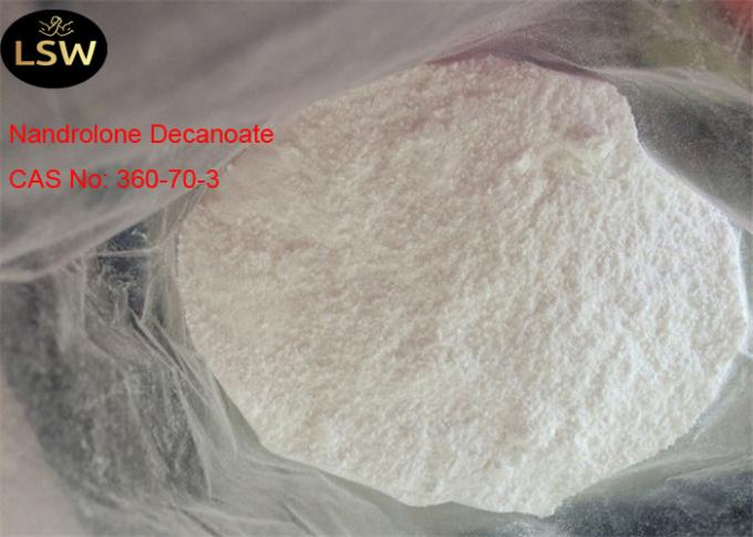 CAS 360-70-3 White Legal Nandrolone Steroid , Nandrolone Decanoate Powder For Bulding Muscle