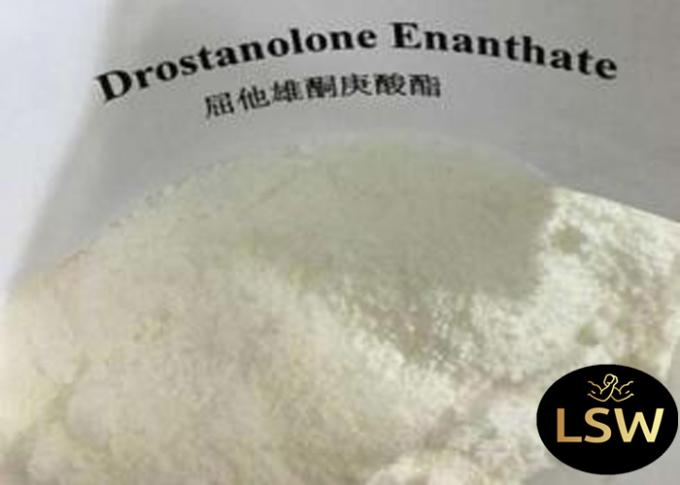 Masteron Muscle Building Supplements Drostanolone Enanthate CAS 472-61-145 99% Purity