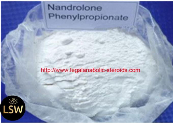 High Purity Nandrolone Phenylpropionate / N PP For Boldybuilding CAS 62-90-8