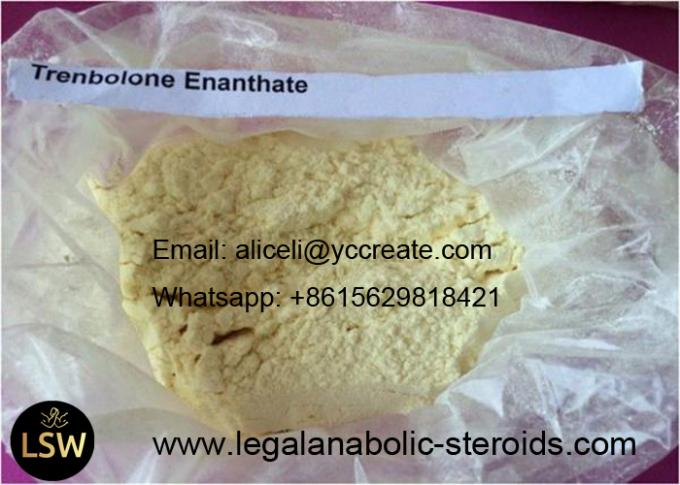 99% muscle growth Trenbolone Steroids Trenbolone Enanthate CAS 10161 33 8 facyory Price