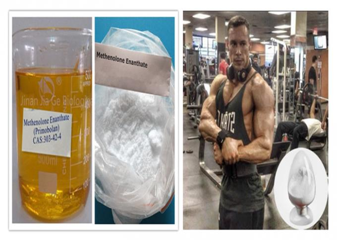 White Color Legal Anabolic Steroids Powder Methenolone Enanthate CAS 303-42-4 For Muscle Building
