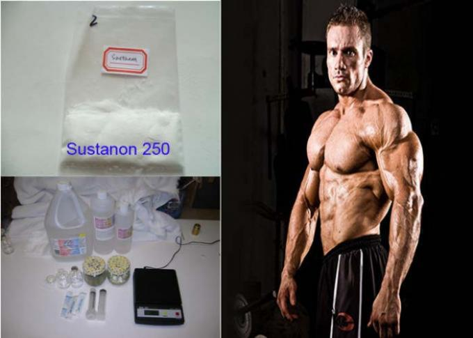 Test Blend Testosterone Anabolic Steroid , Testosterone Sustanon 250 White Powder Healthy Bodybuilding Supplements