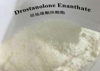 China White Powder Masteron Steroid CAS 472-61-145 Drostanolone Enanthate Bodybuilding Supplements supplier