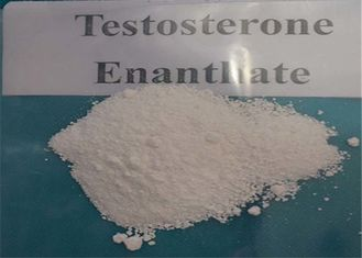 China Legal Anabolic Steroids Muscle Building Testosterone Enanthate Steroid Hormone CAS 315-37-7 supplier