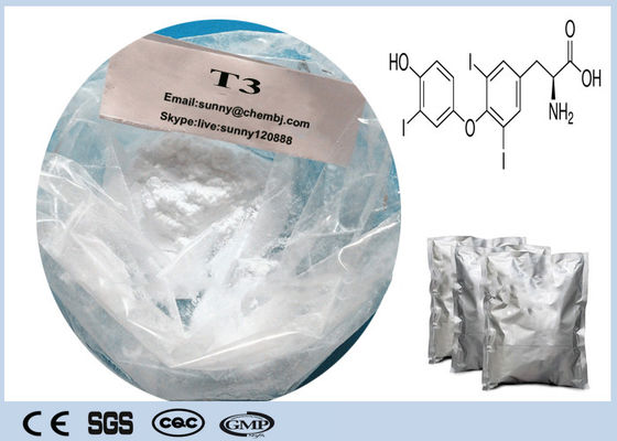 China Loss Weight Raw Hormone Powders ,  Thyroid Hormone Reverse T3 CAS 5817-39-0 supplier