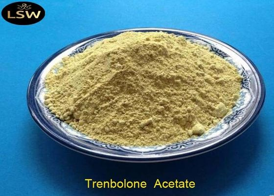 China Tren Acetate Trenbolone Powder CAS 10161-34-9 Yellow Color Bodybuilding Supplements supplier