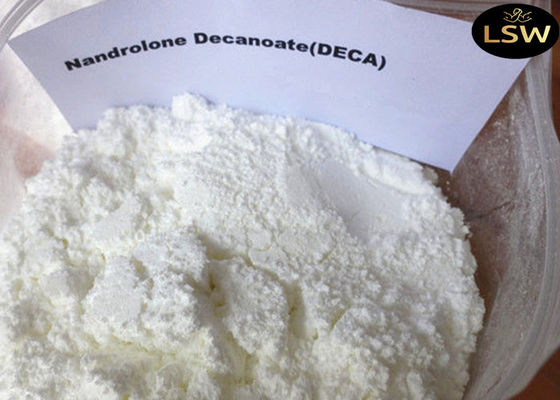China CAS 360-70-3 White Legal Nandrolone Steroid , Nandrolone Decanoate Powder For Bulding Muscle supplier