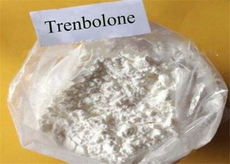China Powerful Trenbolone Powder CAS 10161-33-8 Anabolic Steroids For Muscle Building supplier