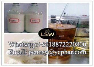 China Raw Steroids Powder Testosterone Phenylpropinate for Body Fitness CAS 1255-49-8 supplier
