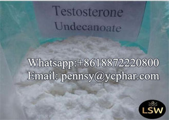 China Injectable Raw Pharmaceutical Material  Powder Testosterone Undecanoate CAS 5949-44-0 for Buiding Muscle supplier