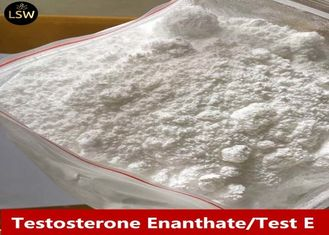 China Test Enanthate / Test e White Raw Powder CAS 315-37-7  Injectable Bodybuilding Steroids supplier