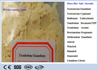 China Dark Yellow Trenbolone Powder Tren E CAS 472-61-546 Trenbolone Enanthate For Fat Loss supplier