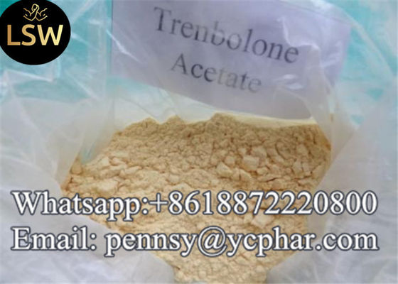 China Trenbolone Acetate Most Versatile Anabolic Steroids for Bodybuilding Finaplix Yellow Powder 99% High Purity supplier
