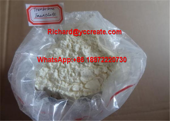 China Yellow Powder Trenbolone Enanthate Hormone Anabolic Steroid Powder supplier