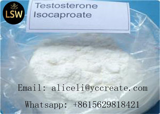 China 99% White Raw Steroids Powder Testosterone Anabolic Steroid Testosterone Isocaproate CAS 15262-86-9 For Weight Loss supplier