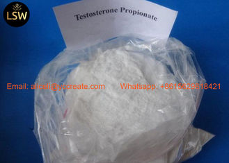 China 99% White Raw Steroids Powder Testosterone Anabolic Steroid Testosterone Propionate CAS 57-85-2 For Weight Loss supplier