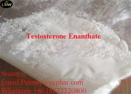 China Injectable Anabolic Steroids Testosterone Enanthate CAS 315 37 7 White Powder High Puirty supplier