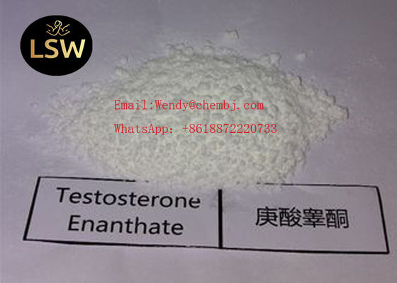 China 99% White Raw Steroids Powder Testosterone Anabolic Steroid Testosterone Enanthate CAS 315-37-7 For Weight Loss supplier