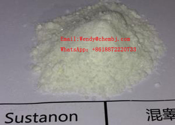 China Test Blend Testosterone Anabolic Steroid , Testosterone Sustanon 250 White Powder Healthy Bodybuilding Supplements supplier