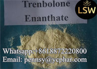 China Trenbolone Enanthate Bodybuilding Anabolic Steroids For FAT Reduce CAS 10161-33-8 factory