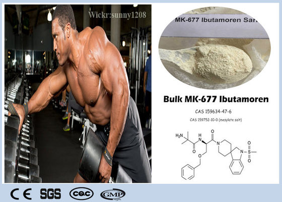 Losing Fat Sarms Bodybuilding Supplements Nutrobal Mk 677 Powder CAS 159752-10-0 Ibutamoren