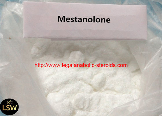 White Solid High Purity DECA Durabolin Steroid Mestanolone Powder for Male Enhancement CAS:521-11-9