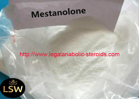 White Solid Powder Legal Anabolic Steroids CAS 521-11-9 Mestanolone For Bodybuilding