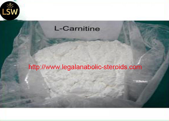 White Crystalline Powder 99.51% Purity Medicine Grade Weight Loss Raw Material L-Carnitine CAS 541-15-1