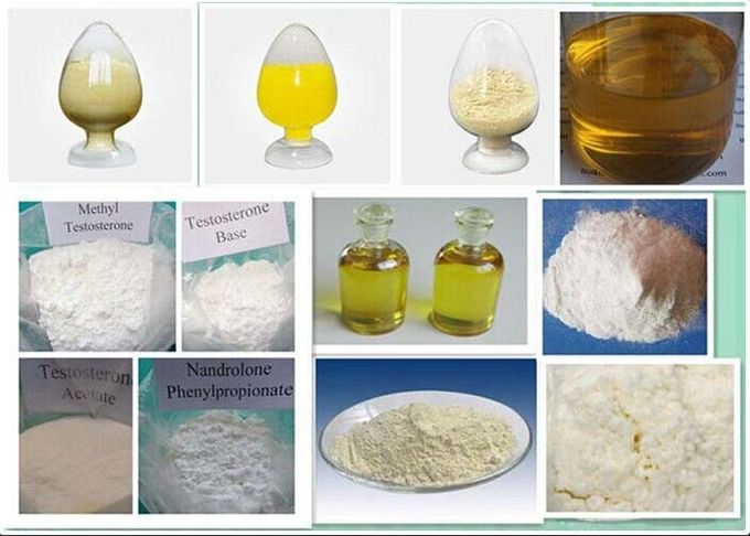 White Powder Injectable Anabolic Steroids Primobolan Methenolone Enanthate CAS 303-42-4