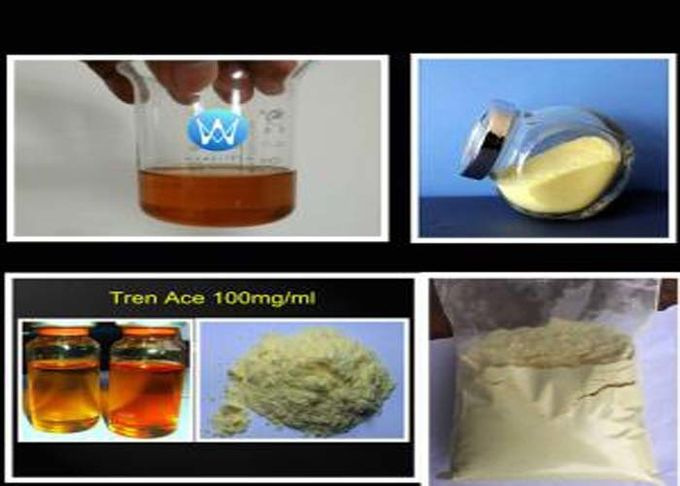Yellow Powder Trenbolone Acetate Injection Steroid 100mg/ml CAS 10161-34-9 Muscle Building